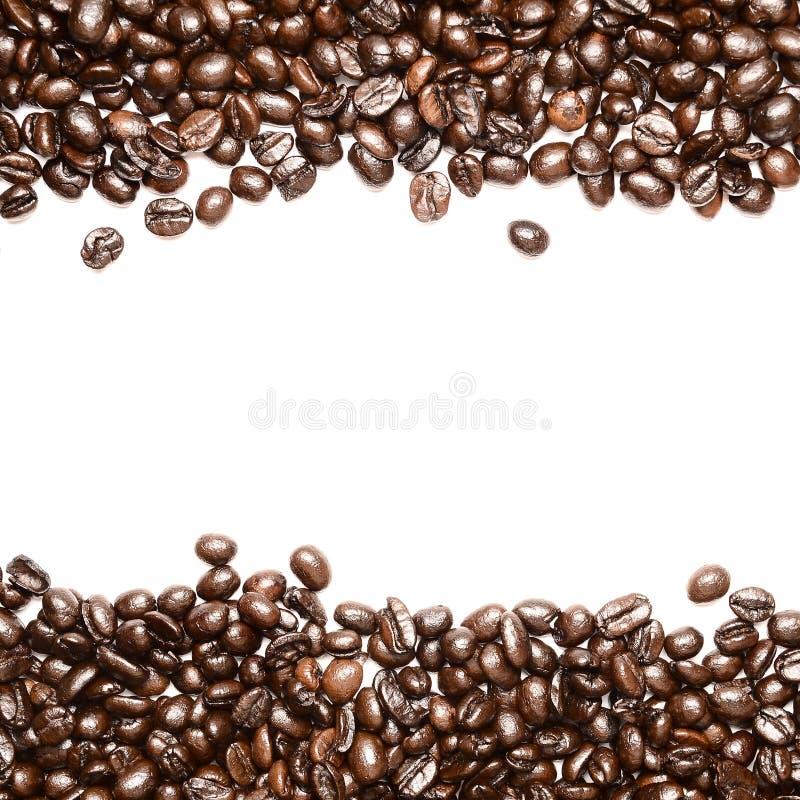Koffie Bean Sort voor exemplaarruimte royalty-vrije stock afbeelding