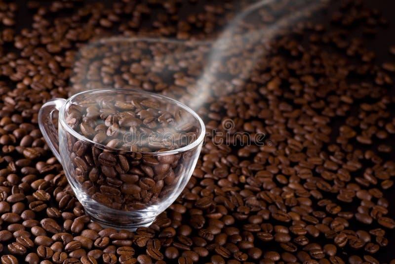 Koffie-bonen royalty-vrije stock foto's