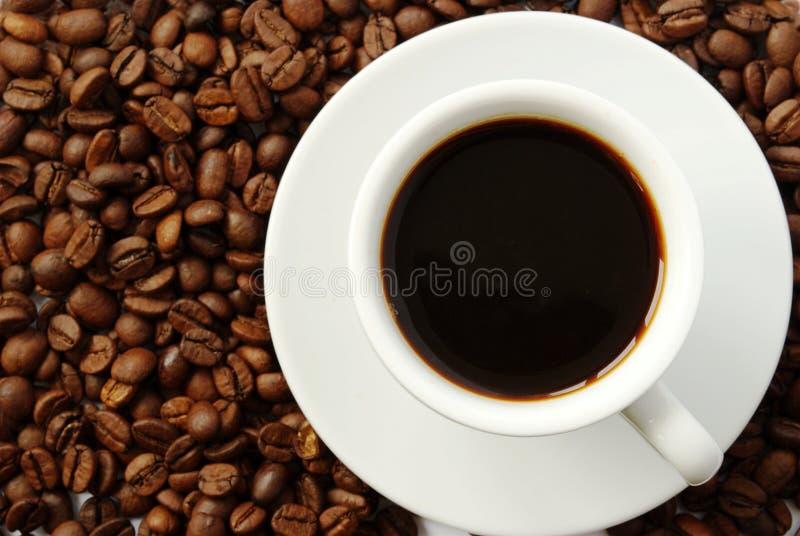 Koffie in een kop stock fotografie