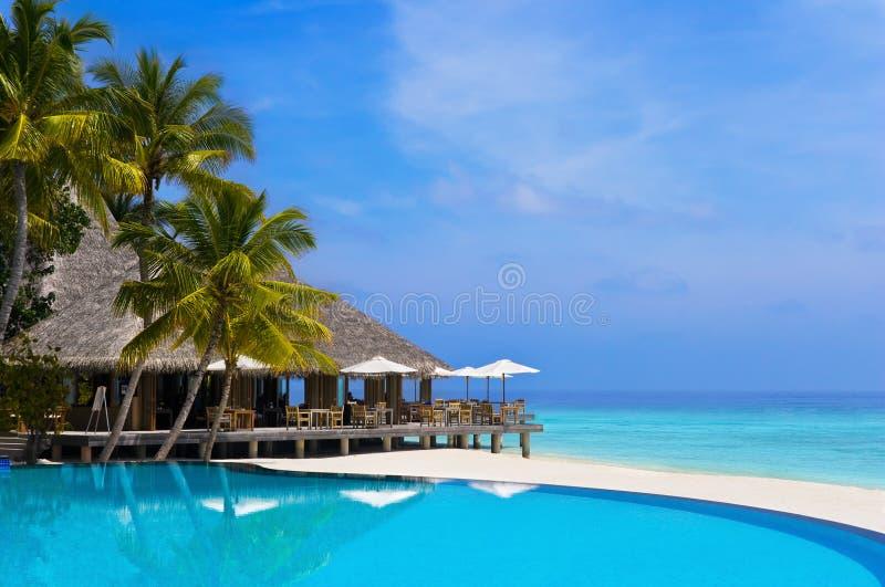 Koffie en pool op een tropisch strand royalty-vrije stock afbeelding