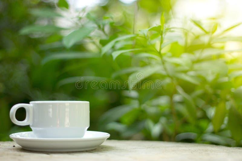 Koffie met aard in de mooie ochtend stock afbeeldingen