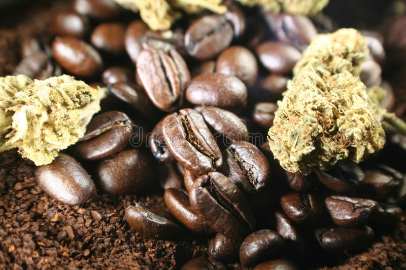 Koffie met Marihuana Bud Close Up High Quality stock foto