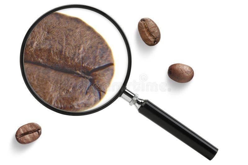 Koffie met meer magnifier stock fotografie