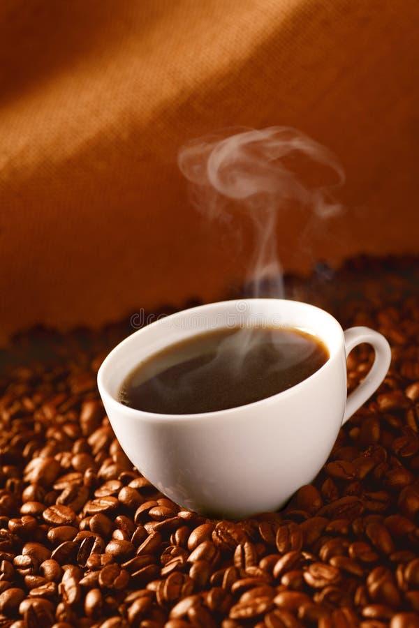 Koffie op koffie-bonen royalty-vrije stock foto