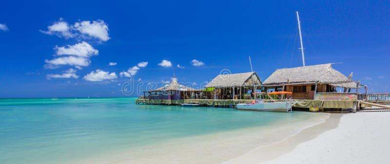 Koffie op tropisch strand in Aruba royalty-vrije stock fotografie