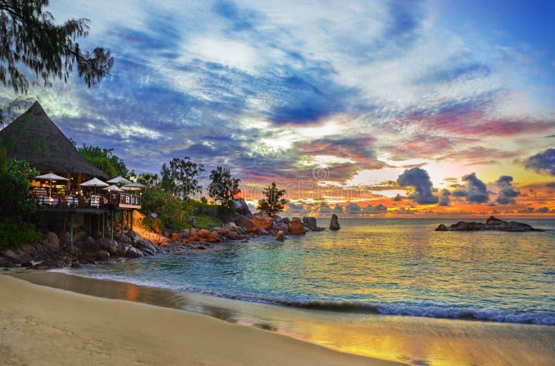 Koffie op tropisch strand bij zonsondergang royalty-vrije stock afbeelding