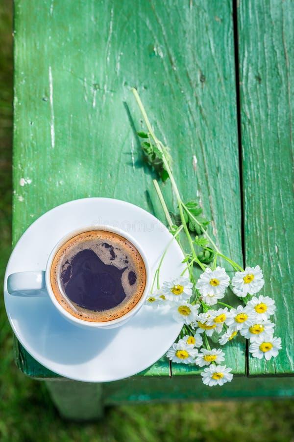 Koffie in tuin voor ontbijt in tuin stock fotografie