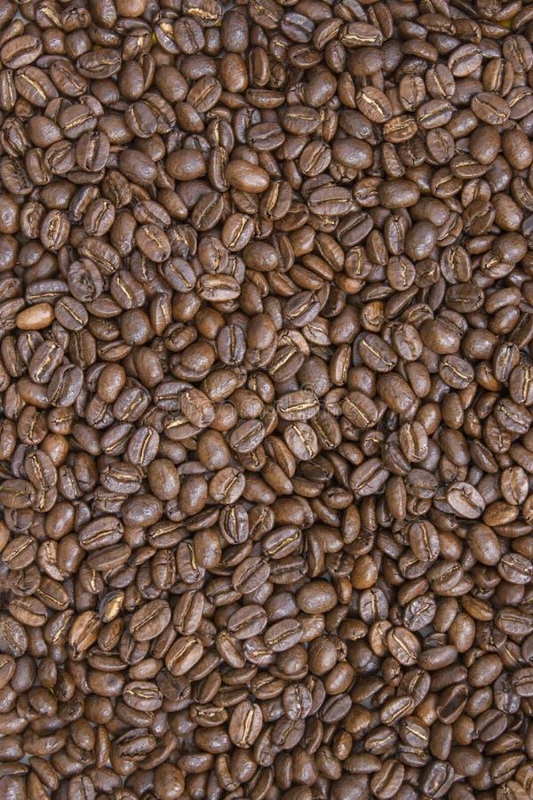 Koffieachtergrond, geroosterde bonentextuur royalty-vrije stock afbeeldingen