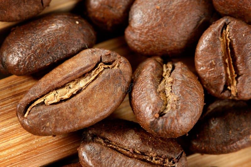 Koffiebonen royalty-vrije stock foto's