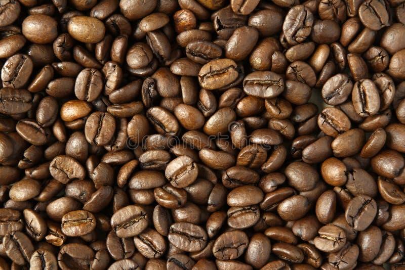 Koffiebonen stock afbeeldingen