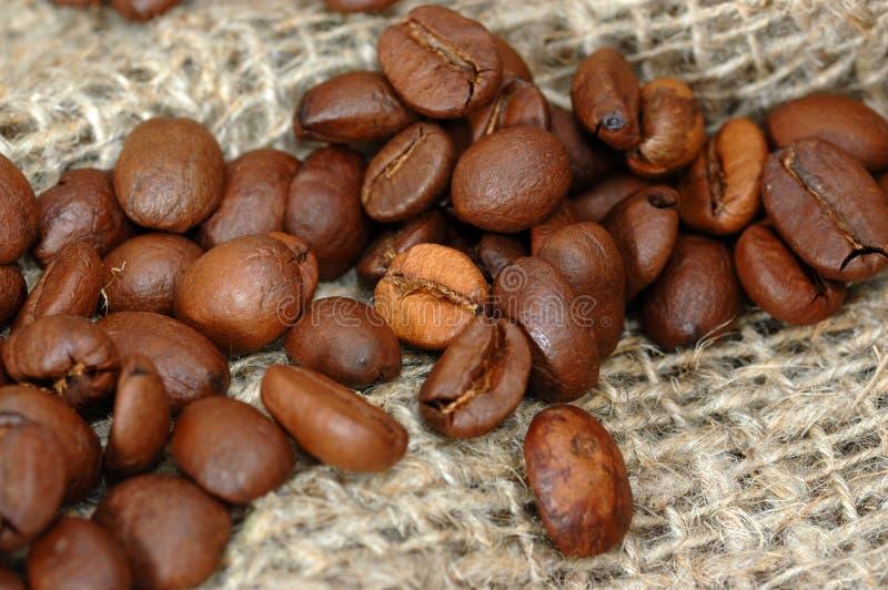 Koffiebonen. stock afbeeldingen