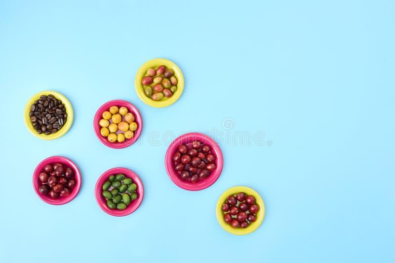 Koffiebonen en de verse bonen van de bessenkoffie op plaat royalty-vrije stock foto