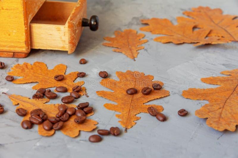 Koffiebonen en handkoffiemolen stock afbeelding