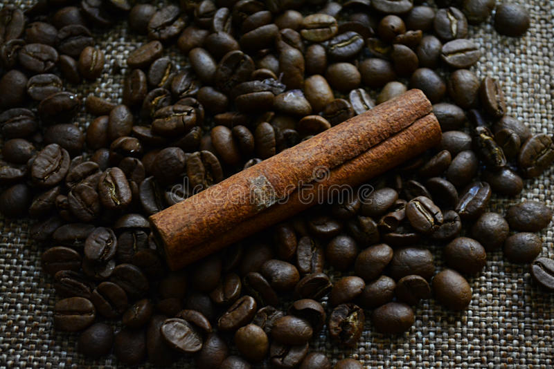 Koffiebonen en kaneelbuis stock foto