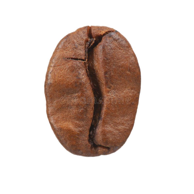 Koffieboon stock afbeelding