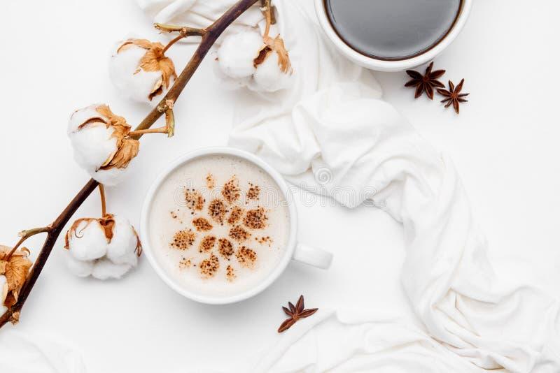 Koffiecappuccino met kaneel en anijsplantsterren op witte achtergrond royalty-vrije stock foto