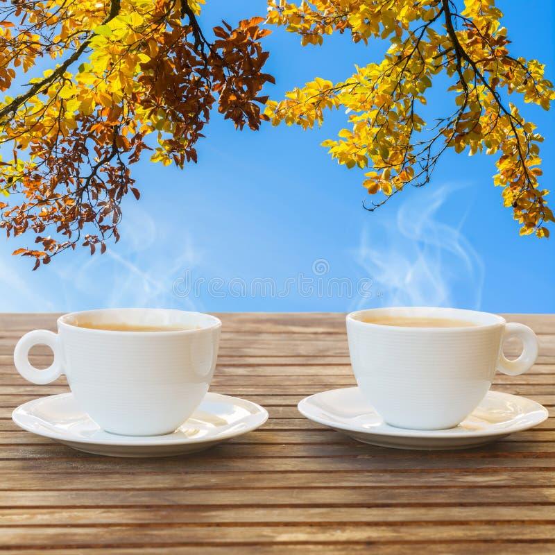 Koffiekop in dalingstuin royalty-vrije stock foto
