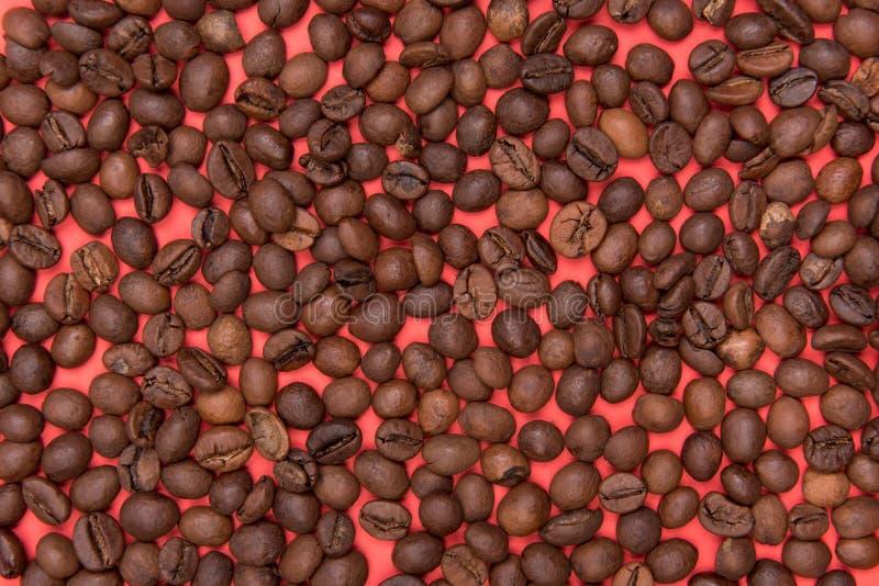 koffiezaden op een gekleurde achtergrond royalty-vrije stock afbeeldingen