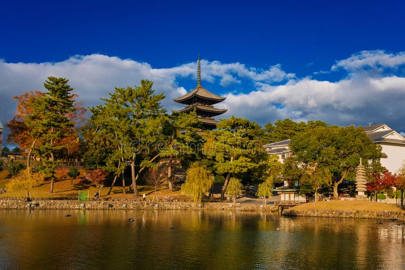 Kofuku Temple Five Storied Pagoda with Sarusawa Pond in Nara stock image