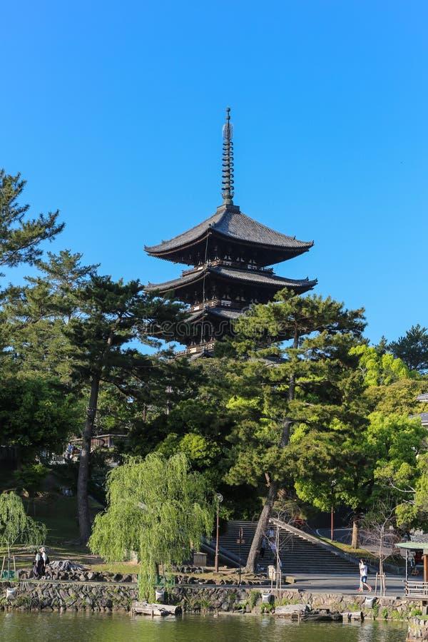 Nara Park - Five-Storied Pagoda Kofukuji royalty free stock image