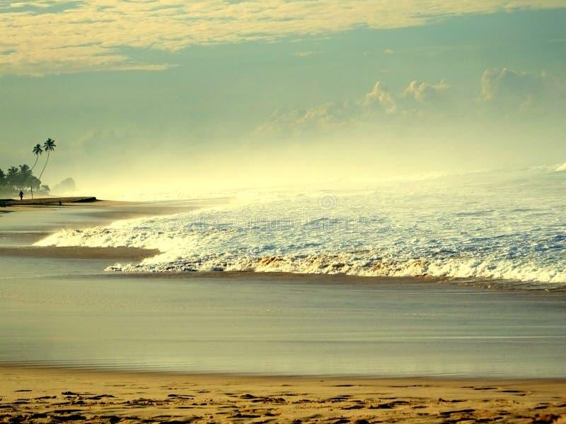 Koggala海滩斯里兰卡 免版税图库摄影