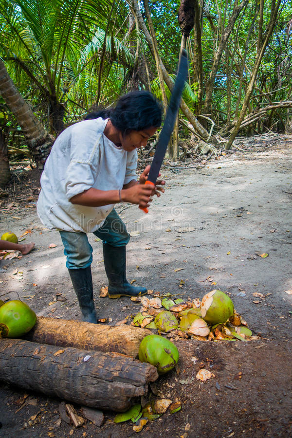 Kogi people, indigenous ethnic group, Colombia. MAGDALENA, COLOMBIA - FEBRUARY 20, 2015: Young man cutting coconuts, Kogi people, indigenous ethnic group, living royalty free stock images