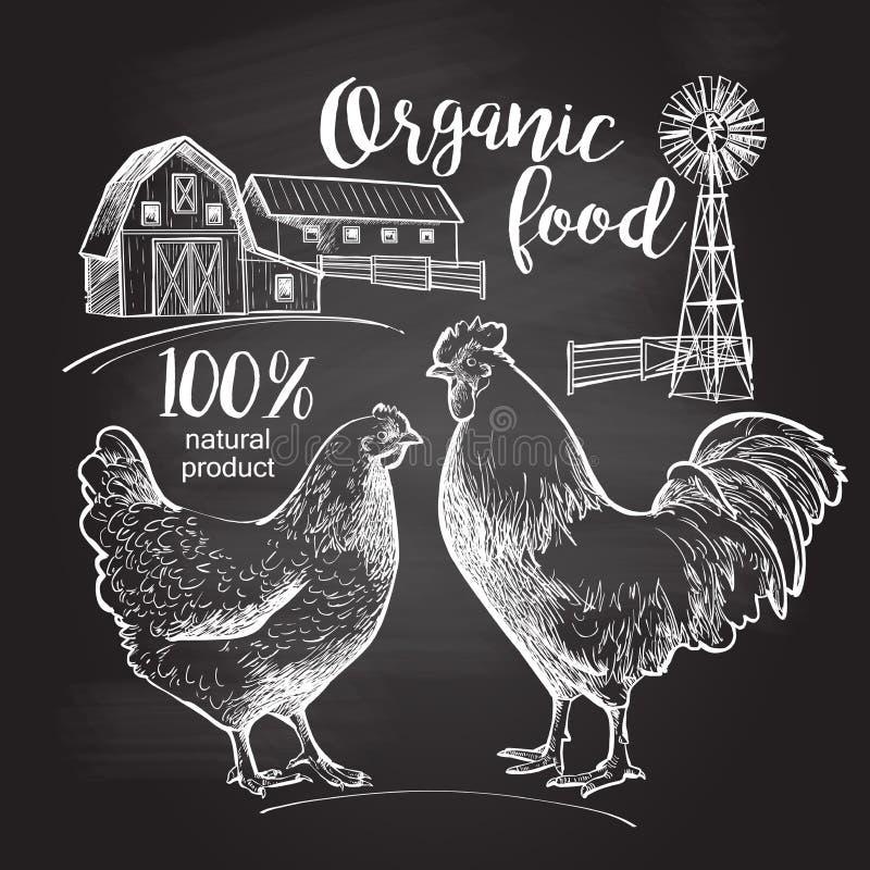 Kogut karmazynki gospodarstwo rolne ilustracja wektor