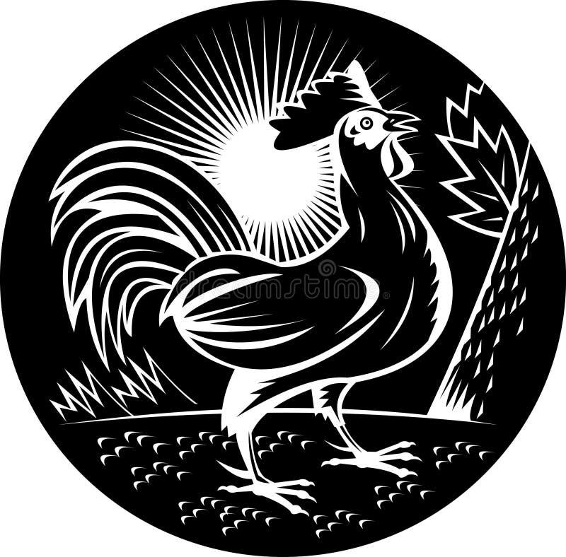 koguta cockerel target2053_0_ kogut ilustracja wektor