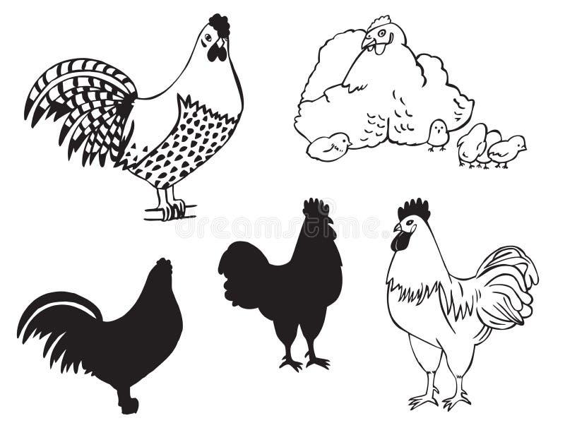 Koguty i karmazynka z kurczakami ilustracji