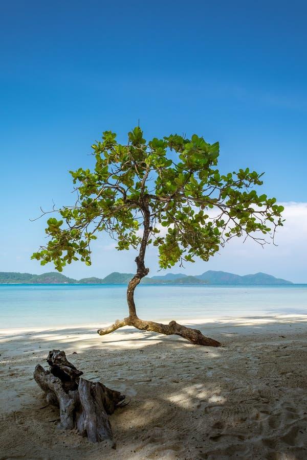 Koh Laoya Lao Ya stock foto