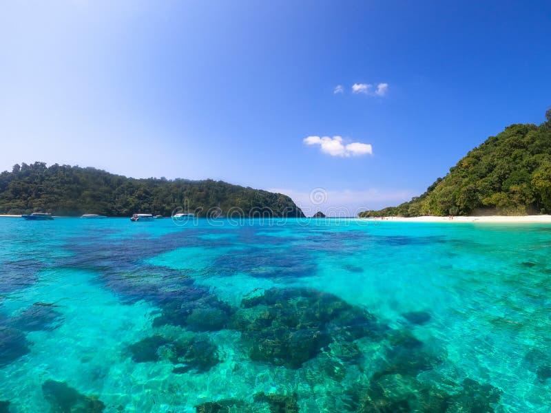 Koh Rok' vackra ö i Krabi fotografering för bildbyråer