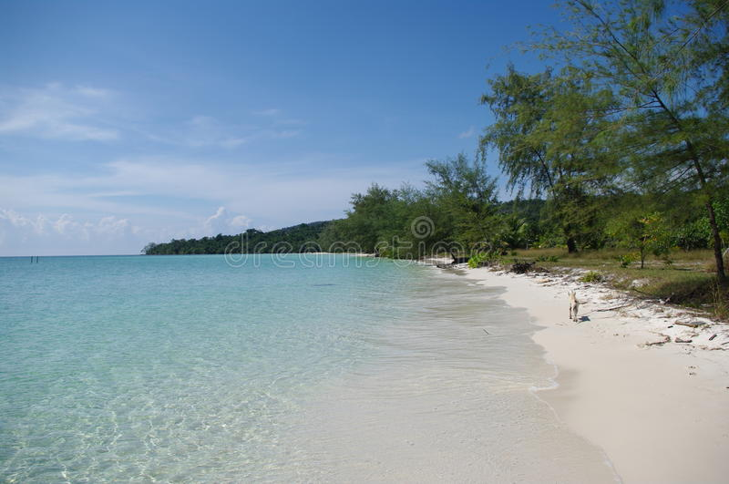 Download Koh Rong Island stock photo. Image of cambodia, asia - 12771662