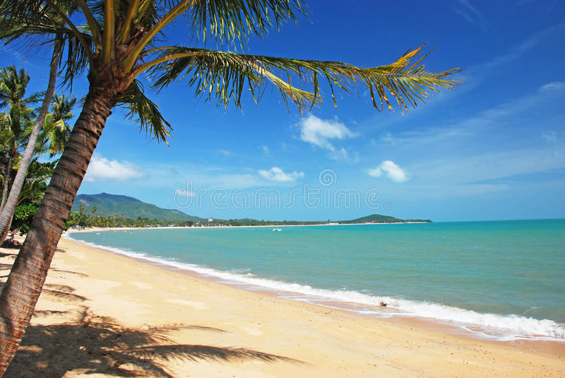 Koh Samui beach. Tropical Koh Samui beach, Thailand stock photos