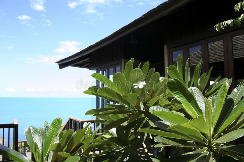 Koh samui beach resort thailand stock photography