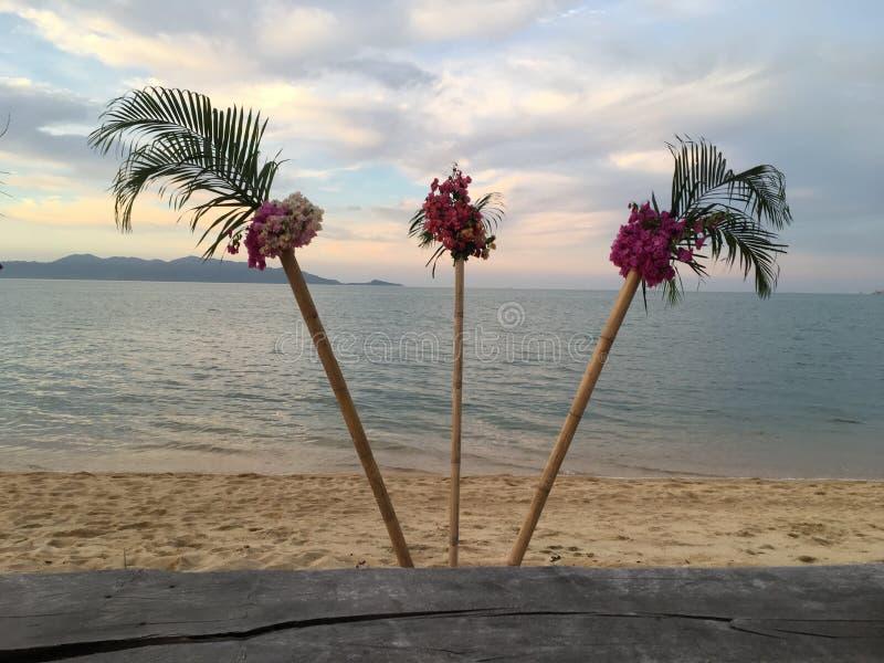 Koh samui beach royalty free stock images