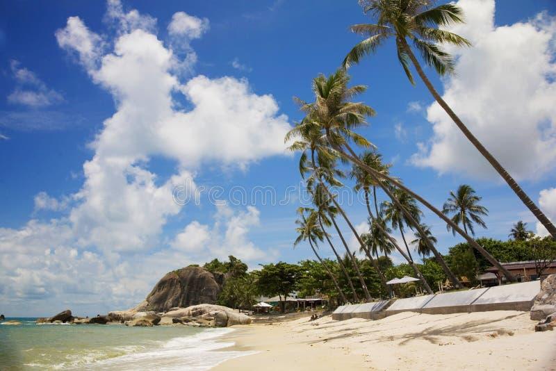 Koh Samui in Thailand. Palm beach in Koh Samui island, Thailand royalty free stock image