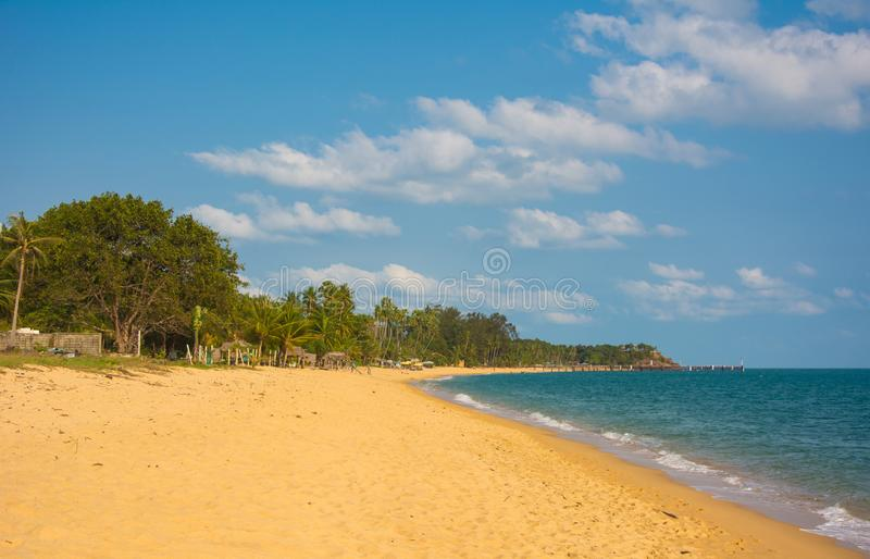 Koh Samui tropical beach with coconut palm trees and golden sand. Koh Samui tropical beach with gold beach, coconut palm trees and pier royalty free stock photo