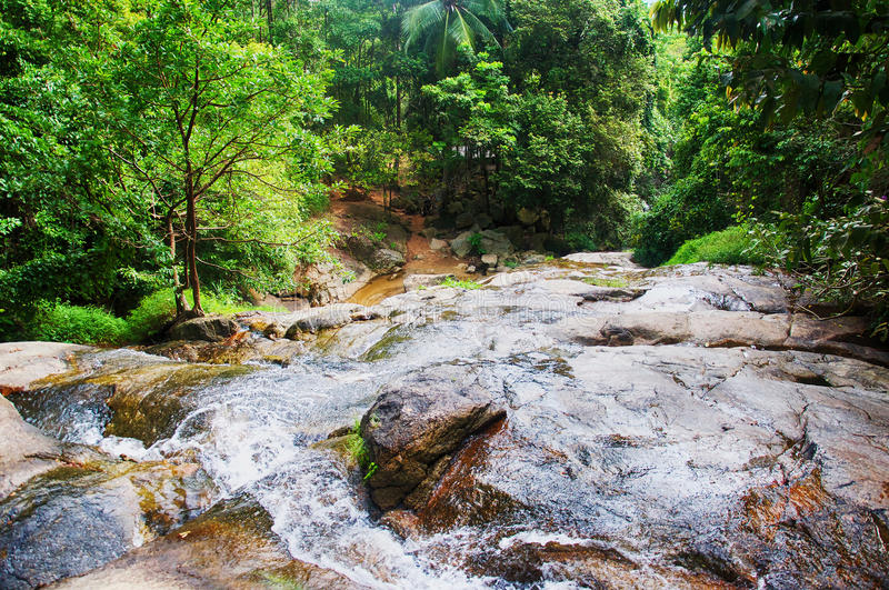 Koh Samui tropical forest with mountain stream. stock photography