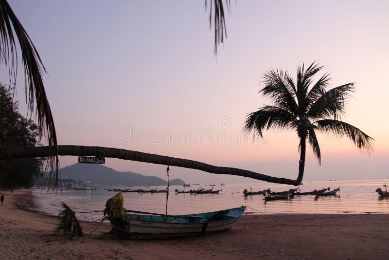 Koh Tao Island, por do sol de Tailândia no mar com barcos fotos de stock