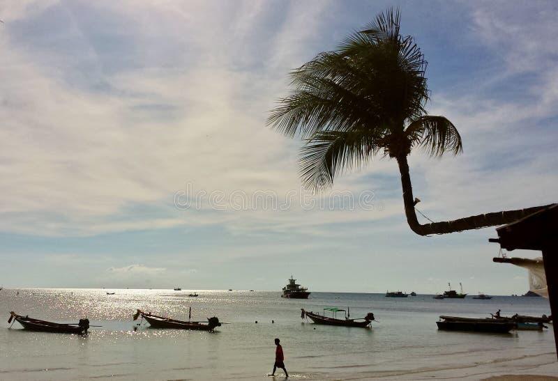 Koh Tao, plaża w ranku fotografia stock
