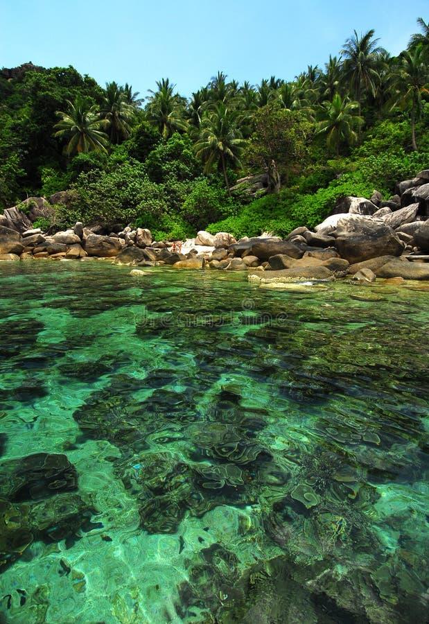 Koh tropical Tao do console, Tailândia fotografia de stock