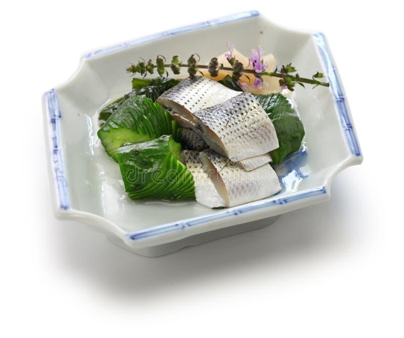Kohada Sunomono manchou o prato vinegared sardinha, culinária japonesa imagem de stock royalty free