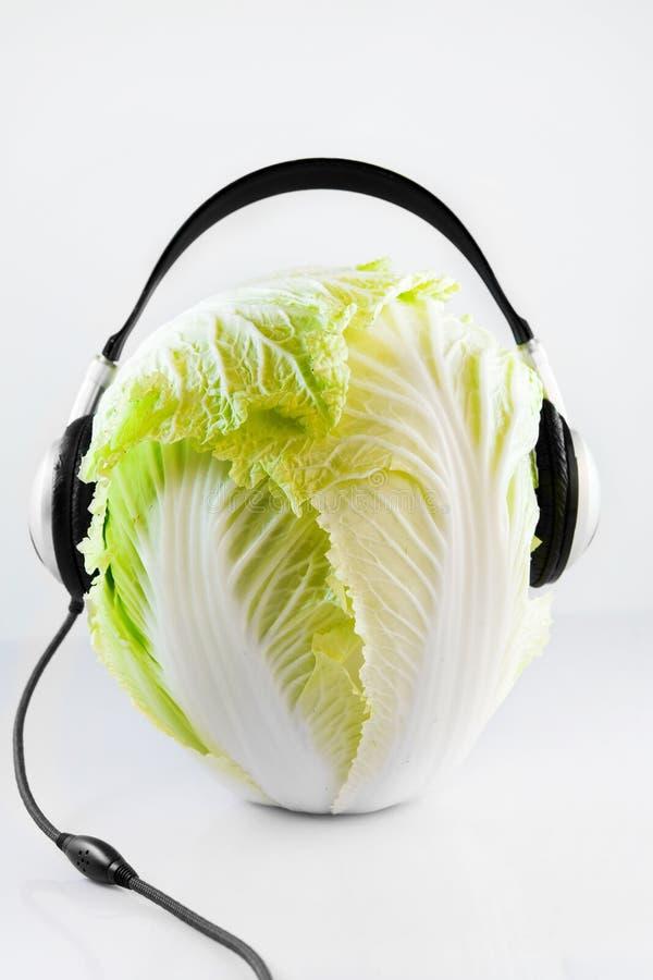 Kohl DJ lizenzfreies stockfoto