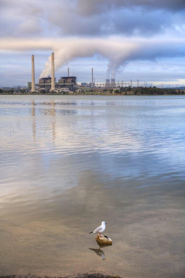 Kohle abgefeuerter Station See Liddell NSW Australien lizenzfreies stockfoto