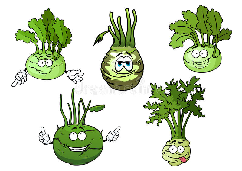Kohlrabi cabbage vegetables cartoon characters. Cartoon funny crunchy kohlrabi cabbages vegetable characters with green rounded heads and fresh leaves. Addition royalty free illustration