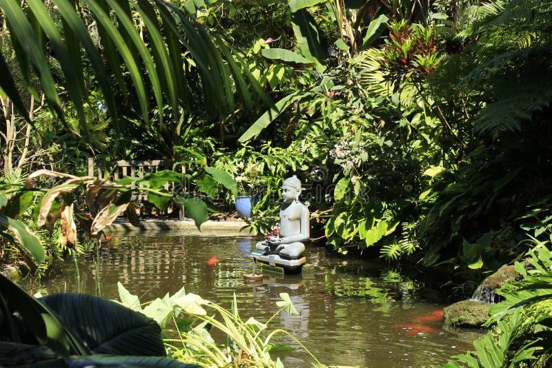 Koi池塘、菩萨staute和豪华的绿色foilage 库存图片