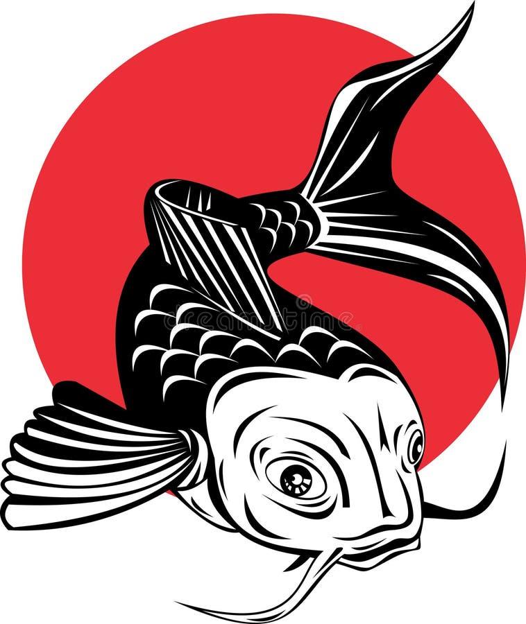 Koi Carp Fish Stock Image