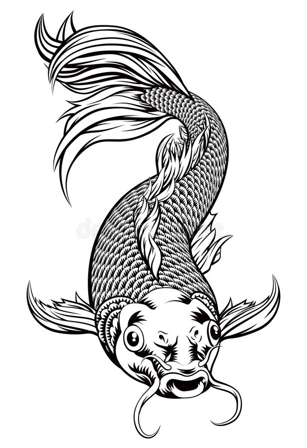 Koi carp fish stock vector illustration of asian artwork for Black and white koi fish