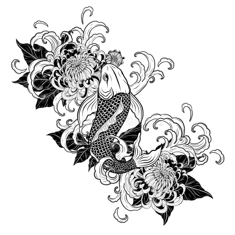 Line Drawing Tattoo Artists : Koi fish and chrysanthemum tattoo by hand drawing stock