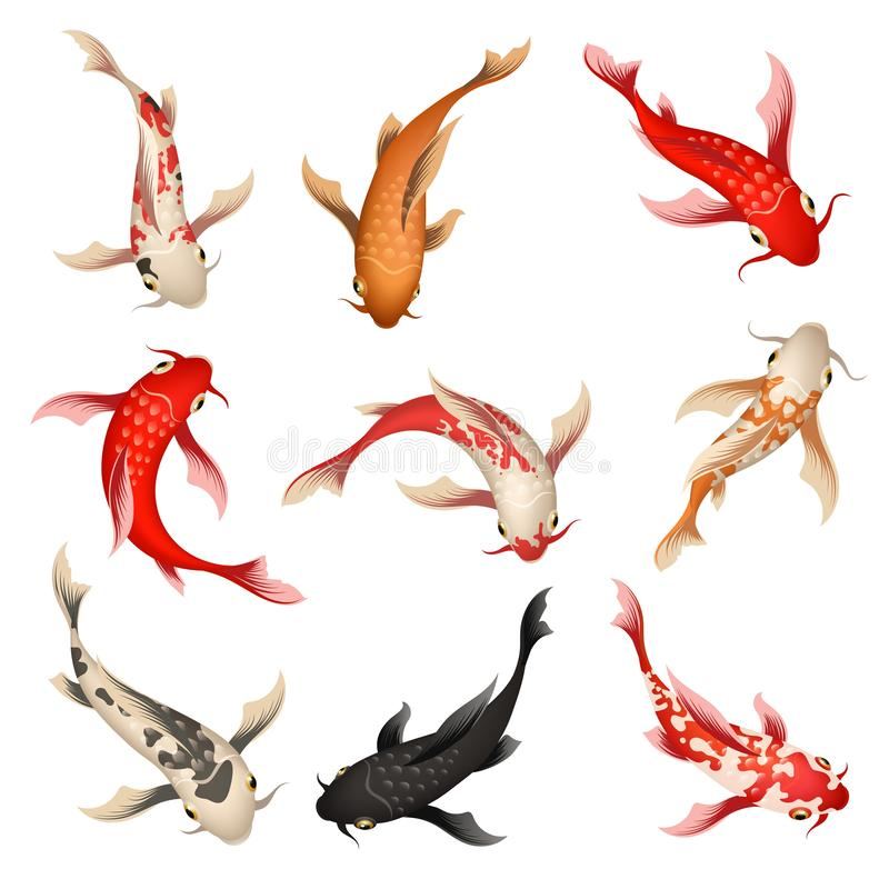 Koi Fish Set stock illustrationer